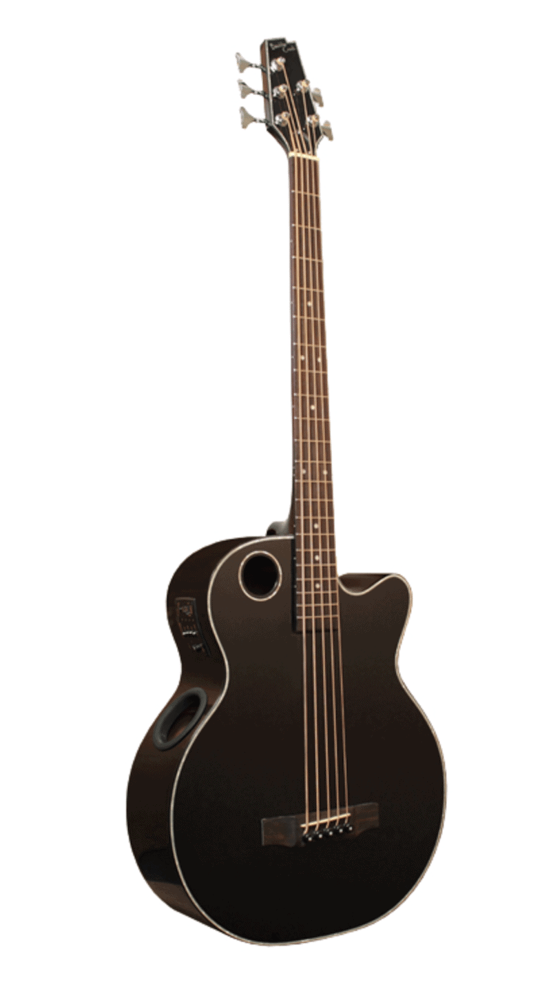 Boulder Creek Bass Review - EBR1-B5 5 String Acoustic/Electric Bass Review