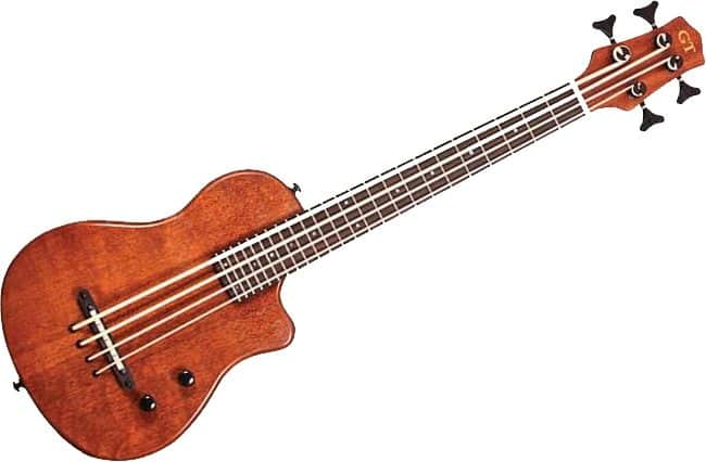 review-gold-tone-me-bass-micro-4-string-electric-bass